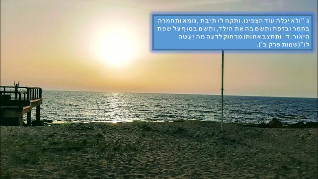 בראשית פרק ב'