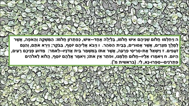 בראשית פרק מ'